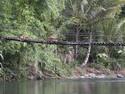 loksado-hanging-bridge-along-amandit-river